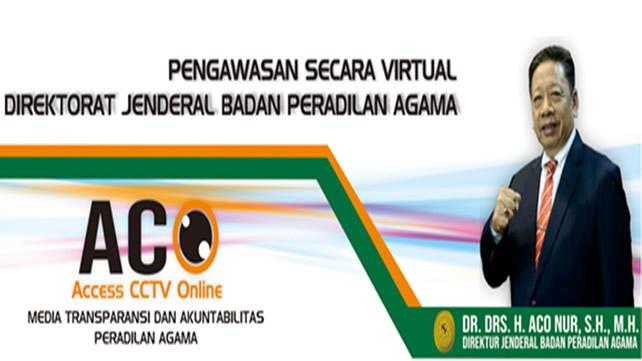Access CCTV Online (ACO)